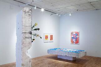 Elizabeth Ferry: DEMS TOAD, installation view