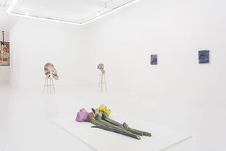 NOT A PHOTO, installation view