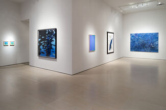 Summertime Blues, installation view