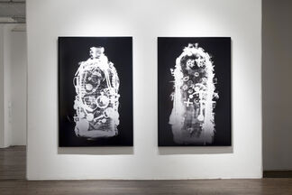 Human Ecology 101, installation view
