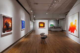 Howard Hodgkin: Hand Painted and Relief Prints: 1990-2014, installation view