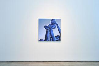 """Alex Gardner """"Blues"""", installation view"""