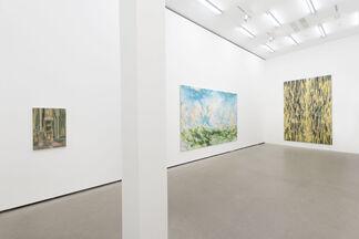 David Schnell: (particolare), installation view