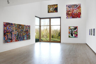 Steve DiBenedetto: Evidence of Everything, installation view