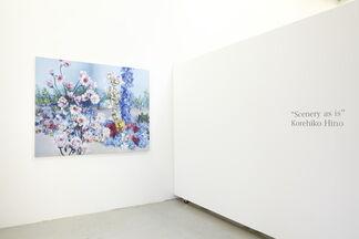 Korehiko Hino: Scenery as is, installation view