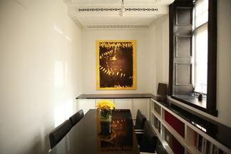 Fernando Prats : Naturalism, installation view