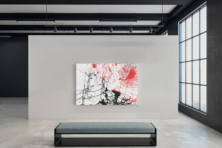 Flora and Fauna, installation view