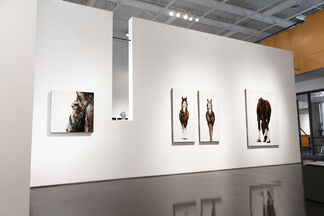 Kevin Sonmor, installation view