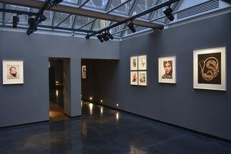 Hiro, installation view