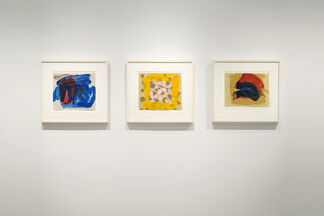 Howard Hodgkin: After All, installation view