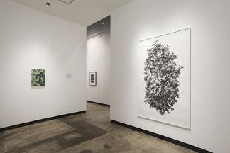"Eric Elliott: ""Overgrown"", installation view"