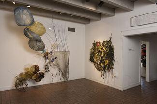 Judy Pfaff  TWENTY YEARS at BELLAS ARTES, installation view