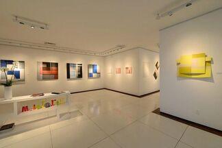 Exposição Luciano Figueiredo, installation view