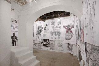 Sissi - Volume Interno, installation view