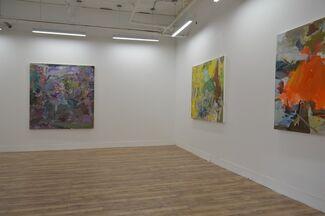 Rebecca Allan: Debris Fields, installation view
