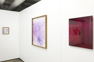 Pureview by Pszemek Dzienis, installation view