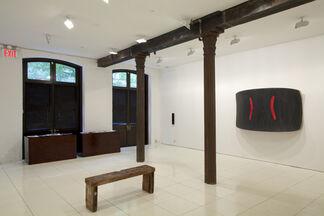 Ron Gorchov: Monsieur X, installation view