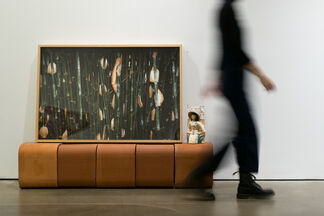 Now You See Me, installation view