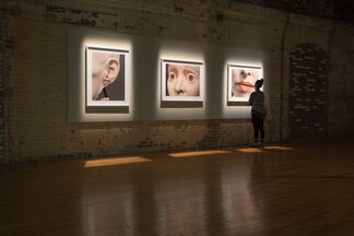 Elizabeth King: Radical Small, installation view