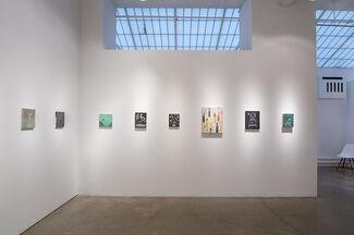 Scott Daniel Ellison | Witch Hazel, installation view