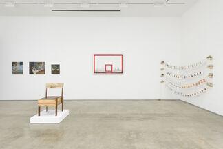 Vernacular Environments, Part 3, installation view