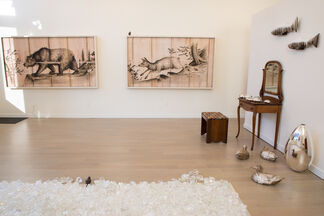 Joseph Rossano: Conservation From Here, installation view
