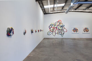 Josephine Durkin: Maps, Flora and Highlighters, installation view