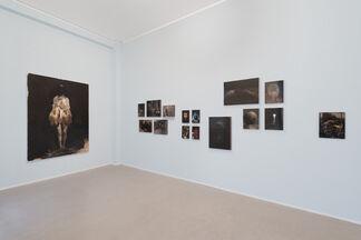 Guarigione dell'ossesso - Nicola Samorì, installation view