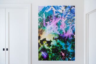 Karine Laval: Artificial by Nature, installation view