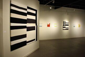 Between Earth and Sky: Works by Heather Jones and Jeffrey Cortland Jones, installation view