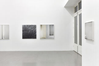 Transects, installation view