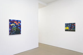 Amy Lincoln: Sun, Moon, Stars, installation view