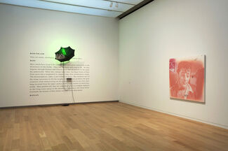 Vernon Fisher: Angel Face, installation view
