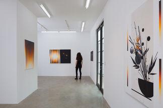 Birds of Paradise, installation view