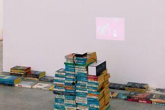 Cartoon Physics, installation view