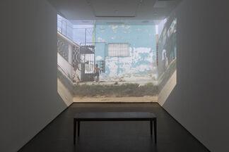 "Eric Cahan ""Rabbits, Rats & Cats"", installation view"