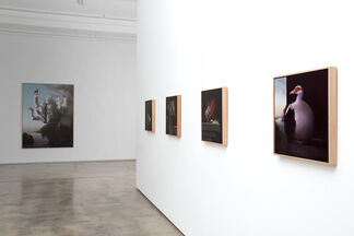 Fully Automatic, installation view