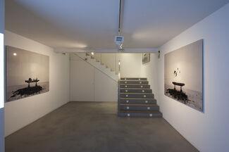KIN, installation view
