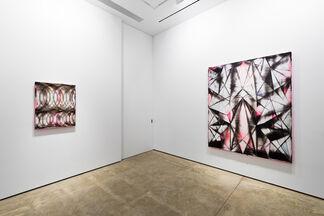 Shannon Finley, installation view