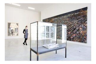Flowers, Death And Butterflies, installation view