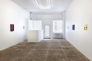Complex Decisions, installation view