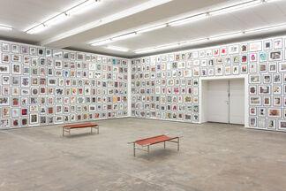 David Renggli - Two Melons and 1 banana, installation view