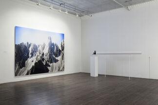 Diemut Strebe: Free Radicals: Sugababe and Other Works, installation view