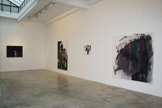 Piotr Janas: Istituto del Cervello, installation view