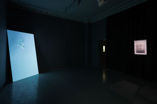 Body and Darkness, installation view