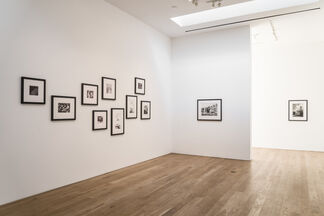 MARTIN MULL | STATE OF THE UNION, installation view