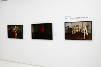 What Should Remain Secret, installation view