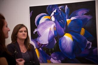 Margaret Morrison Larger Than Life, installation view