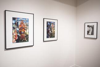 Gordon Parks: Model Citizen, installation view