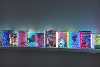 Airan Kang, installation view